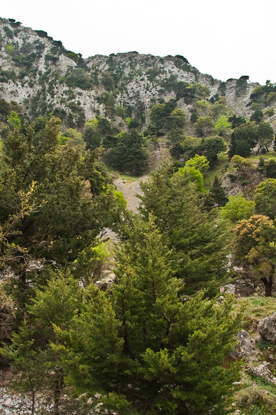 2010-April-25-Imbros Gorge-13