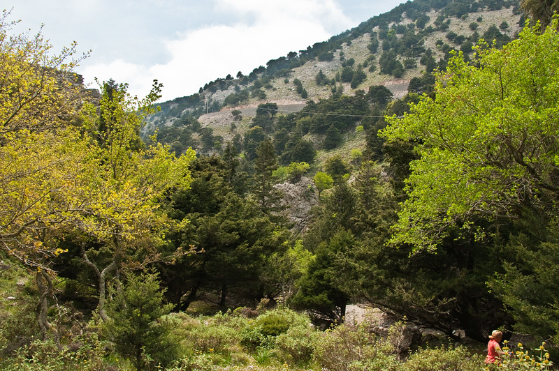 2010-April-25-Imbros Gorge-17
