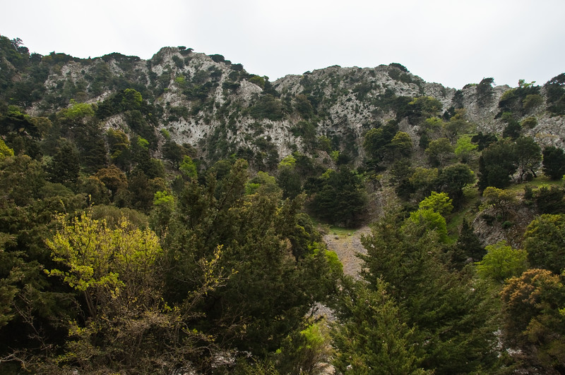 2010-April-25-Imbros Gorge-14