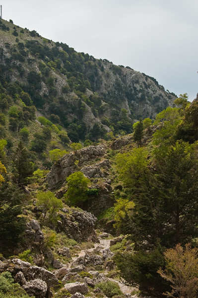 2010-April-25-Imbros Gorge-7