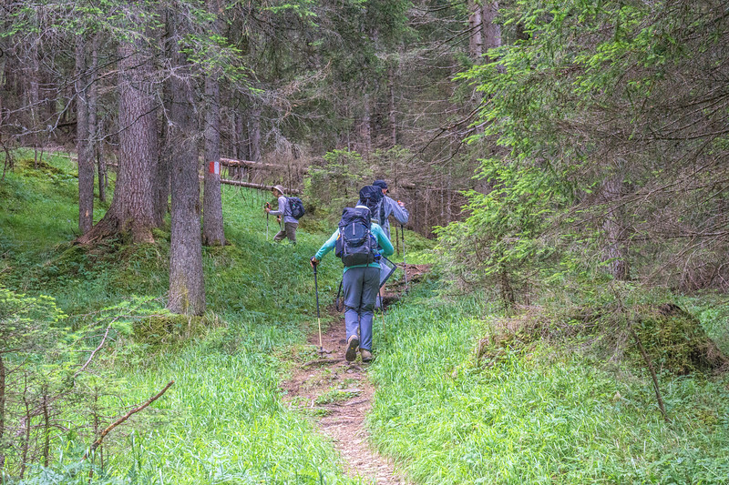 Walking to the Refuge