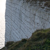 Beachey Head-9