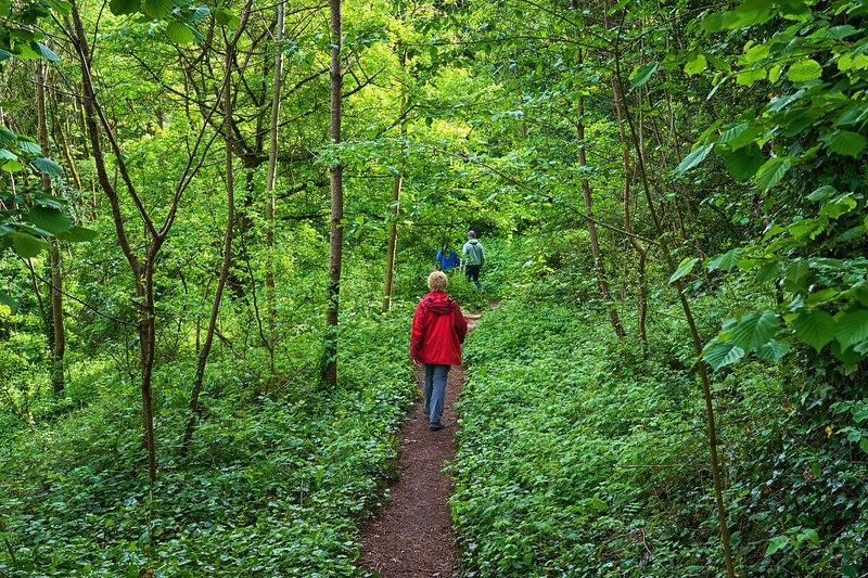 Cumberland Basin Walk