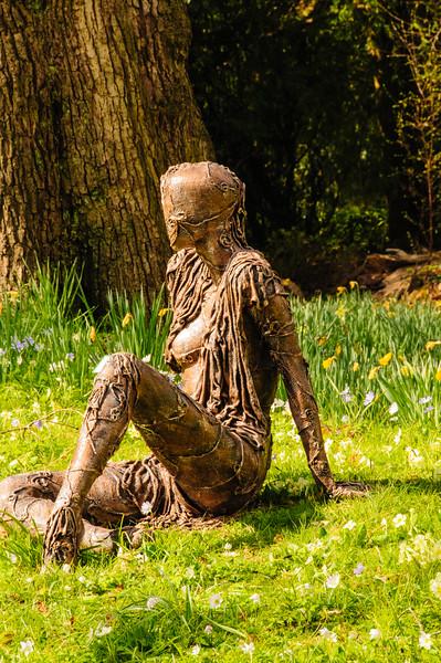 Bristol University Botanic Garden-11