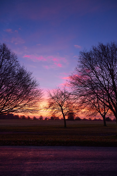 Sunrise on the Downs