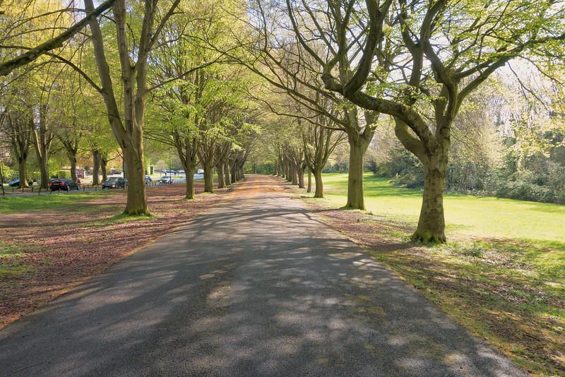The Promenade, Clifton