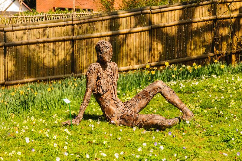 Bristol University Botanic Garden-8