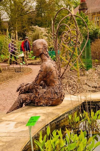 Bristol University Botanic Garden-12