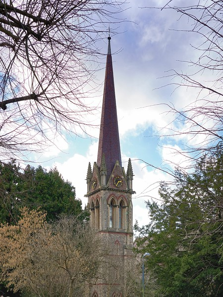 Walk round Stoke Bishop, Sneyd Park and Clifton