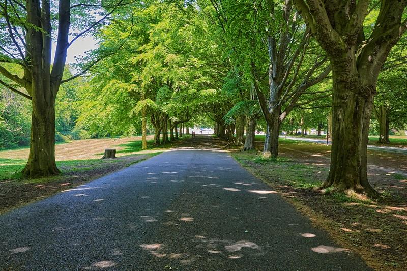 Nightingale Valley Walk