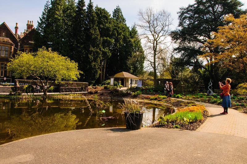 Bristol University Botanic Garden-5