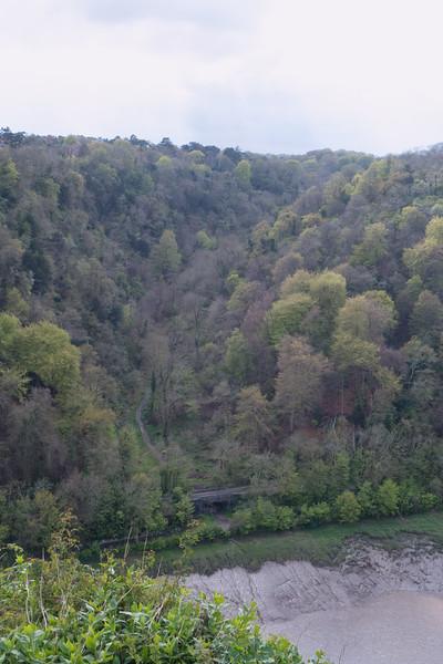 Nightingale Valley, Leigh Woods