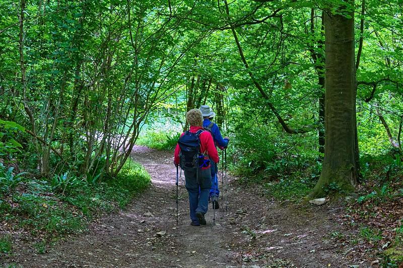 Cotswold Walk