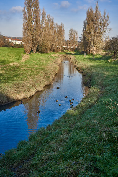 Beside the River Trym