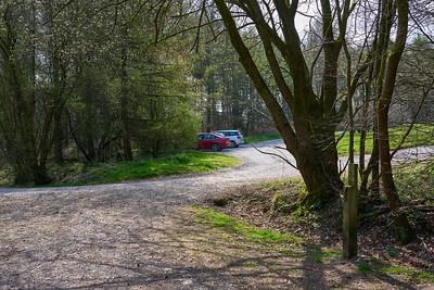 Harptree Walk