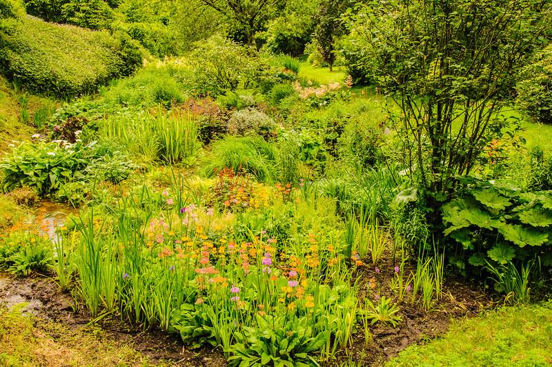 Marwood Garden-35