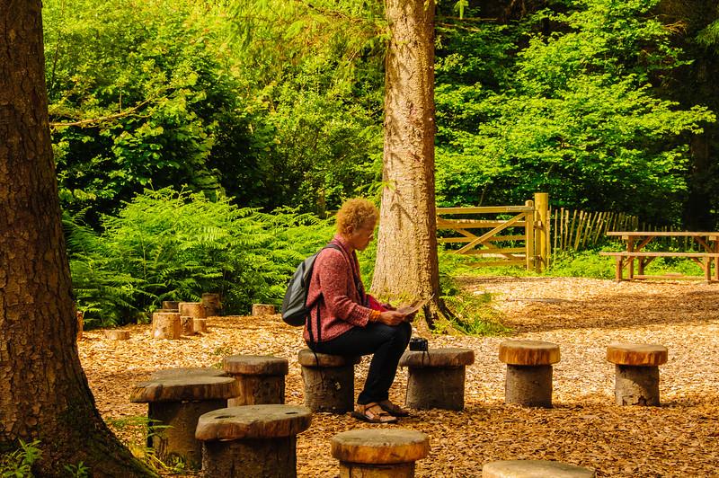 Rosemoor Garden-28