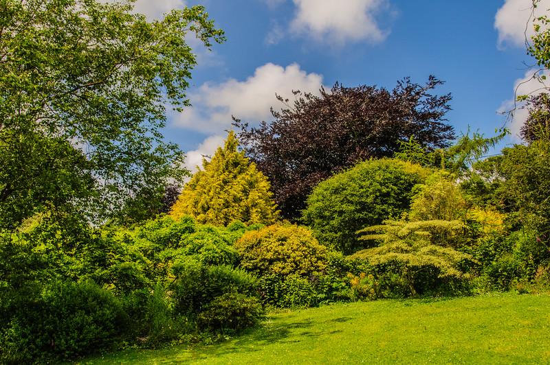 Marwood Garden-1