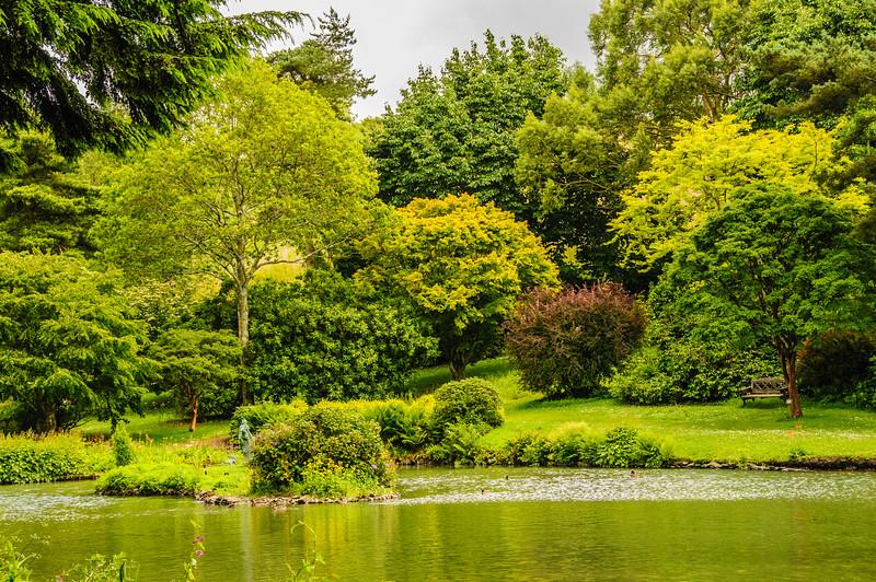 Marwood Garden-11