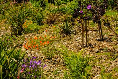 Marwood Garden-3
