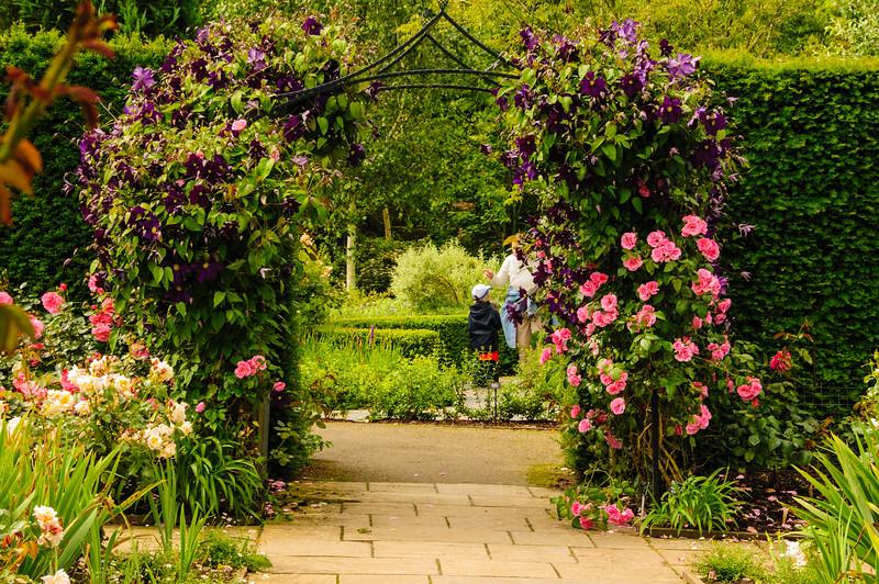 Rosemoor Garden-13