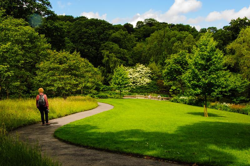 Rosemoor Garden-29