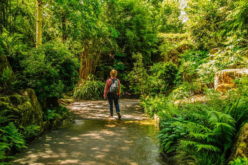 Rosemoor Garden-42