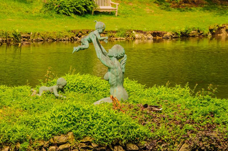 Marwood Garden-28