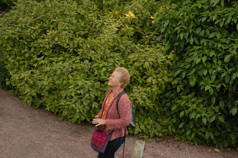 Rosemoor Garden-11