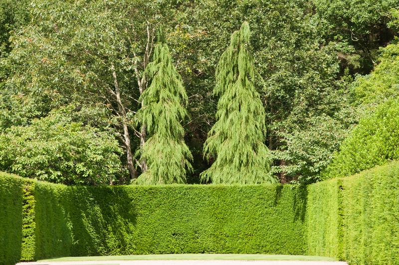 Rosemoor Garden-19