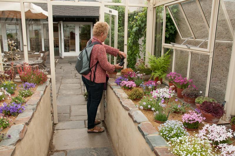 Rosemoor Garden-5