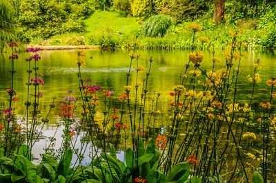 Marwood Garden-6