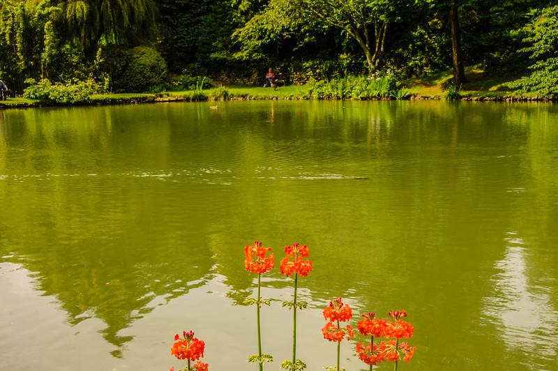 Marwood Garden-32