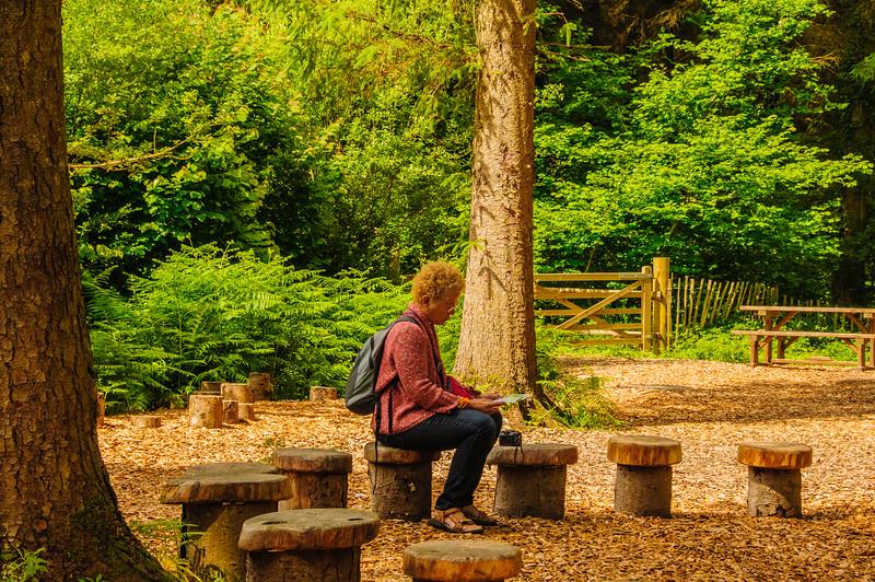 Rosemoor Garden-27