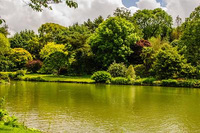 Marwood Garden-8