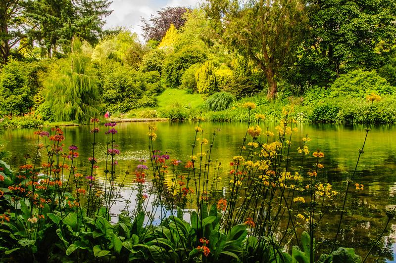 Marwood Garden-5