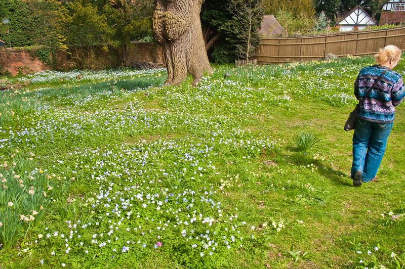 2010-April-21-Bristol Botanic Garden-2