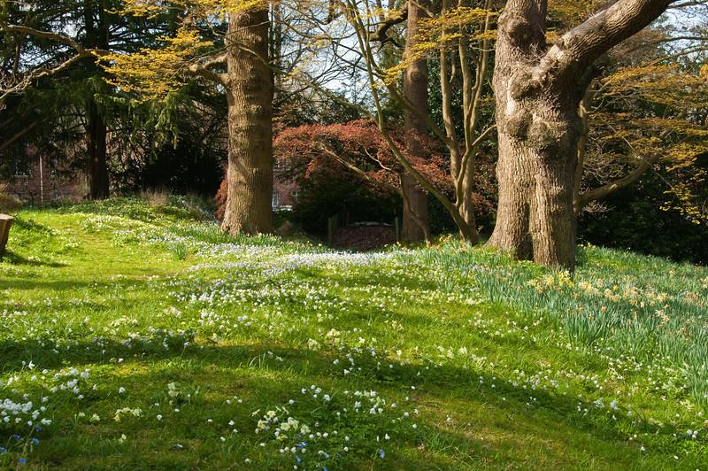 2010-April-21-Bristol Botanic Garden-3
