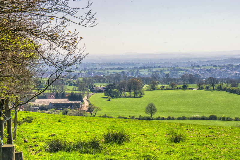 East Mendips excursion-92-Edit