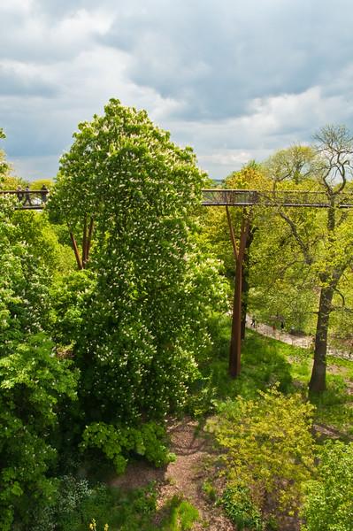 2010-May-15-Kew-26