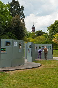 2010-May-15-Kew-3