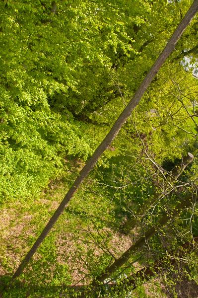 2010-May-15-Kew-27