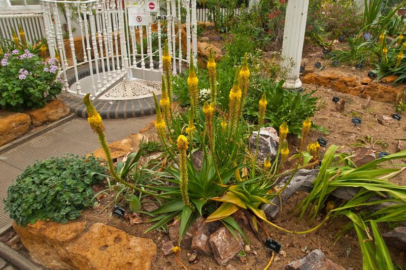 2010-May-15-Kew-14