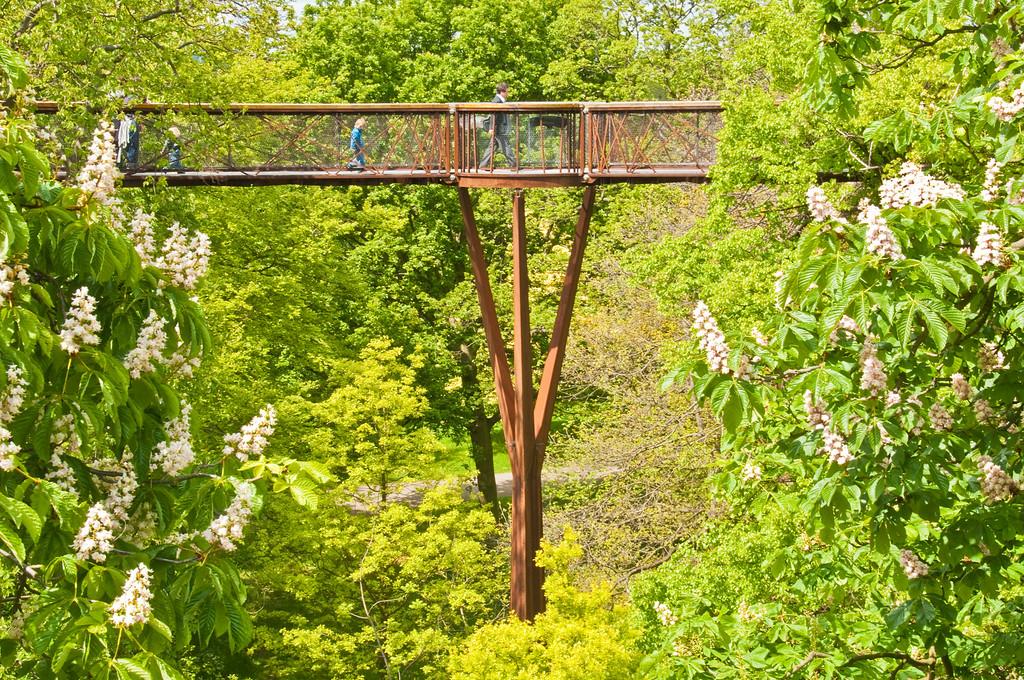 2010-May-15-Kew-33