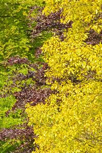 2010-May-15-Kew-28