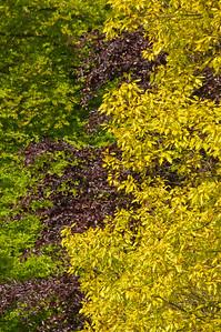 2010-May-15-Kew-29