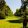 Westonbirt Arboretum-34