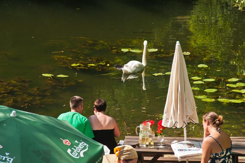 Kennett and Avon Canal-6
