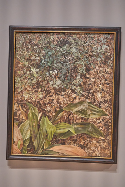 Two Plants 1977 - 80