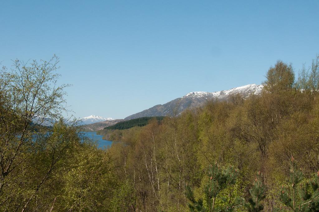 090512_Loch Laggan_002